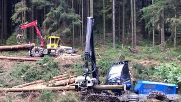 Unternehmen Forstunternehmen Matthias Möller