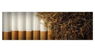 Unternehmen Tabak-Corner